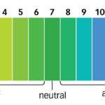 Възможно ли е да променим pH с диета?