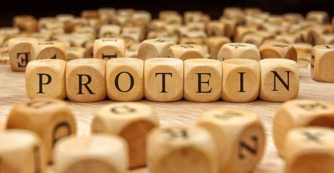 Протеинов дефицит