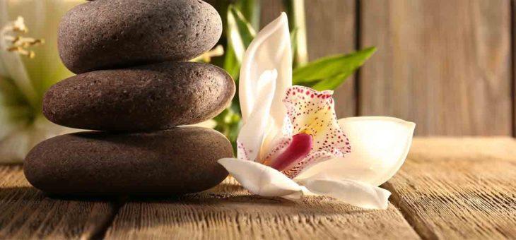 Хармония между чувство и мисъл
