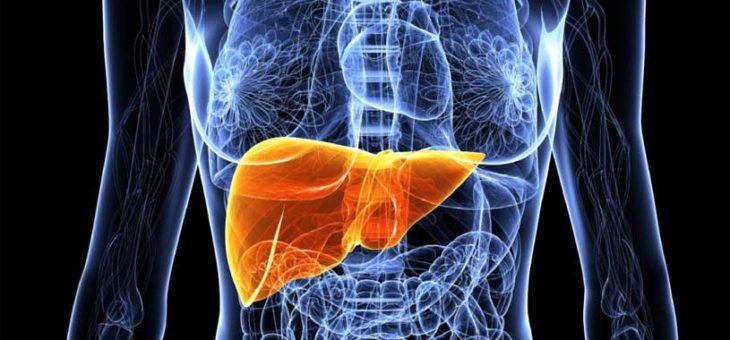 Черният дроб и неговата функция според китайската традиционна медицина