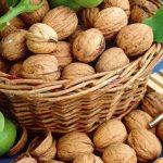 Орехите